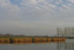 De Blokkreek en de omgeving van Sint-Margriete.