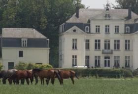Wippelgem Castle with horses from Den Heffinck