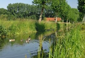 De trekweg langs de Lieve. Deze loopt van Belzele tot Stoktevijver in Zomergem.