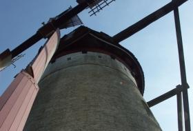 De Stenen Molen in Ertvelde speelt nog altijd een rol als speltmolen.