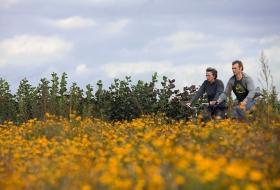 Fietsen in de bloemrijke omgeving van Wetteren