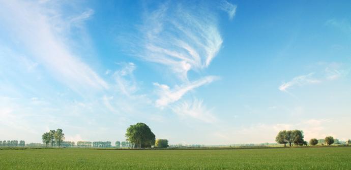 Platteland in Sint-Laureins