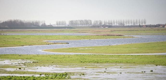 Een afbeelding van Havenland - Polder fietsroute