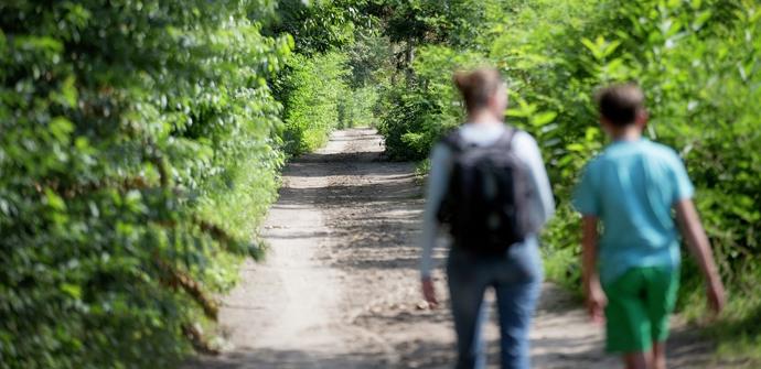 Een afbeelding van Langs Donk en Broek wandelroute
