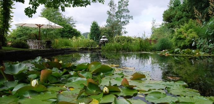 Een afbeelding van Wetterse  Watertuin